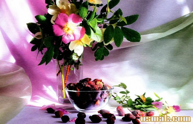 Рецепт Сушеный шиповник