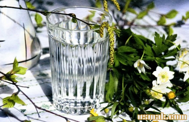 Рецепт Березовый сок